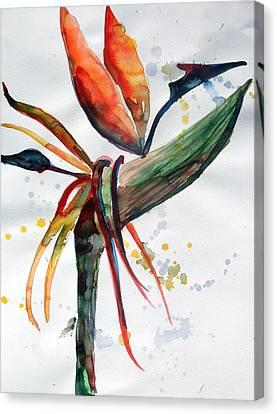 Bird Of Paradise Canvas Print by Mindy Newman