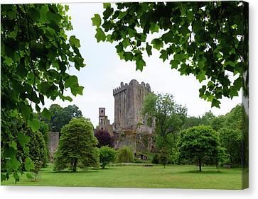 Blarney Castle - Ireland Canvas Print by Joana Kruse