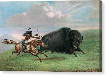 Running Horses Canvas Print featuring the drawing Buffalo Hunt by George Catlin