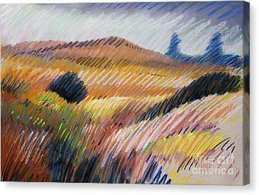 Coastal Hills Canvas Print by Donald Maier