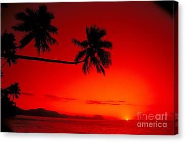 Fiji, Kadavu Island Canvas Print by Ron Dahlquist - Printscapes