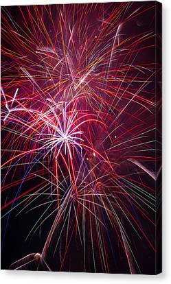Fireworks Exploding Canvas Print by Garry Gay