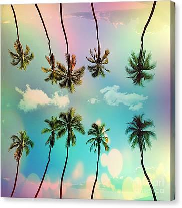 Florida Canvas Print by Mark Ashkenazi