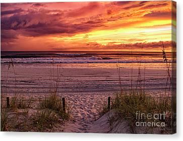 Florida Sunset Canvas Print by Mechala Matthews