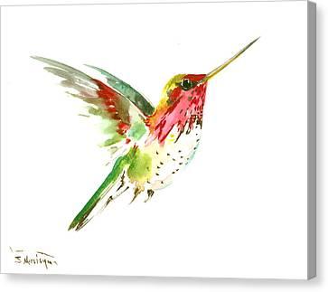 Flying Hummingbird Canvas Print by Suren Nersisyan