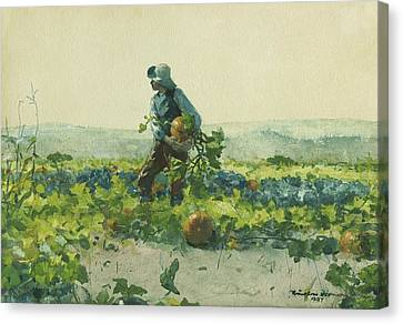 For To Be A Farmer's Boy Canvas Print by Winslow Homer