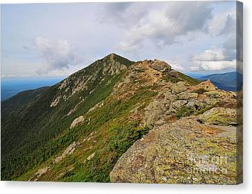 Franconia Ridge  Canvas Print by Catherine Reusch  Daley