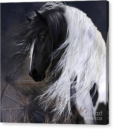 Gypsy Vanner Canvas Print by Shanina Conway