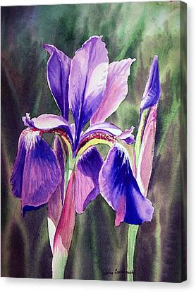 Purple Iris Canvas Print by Irina Sztukowski