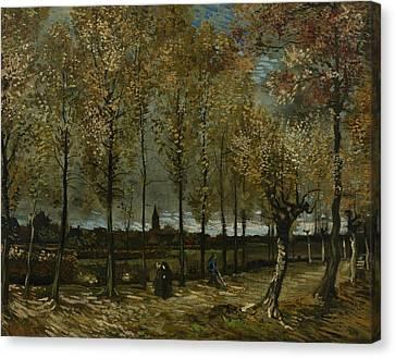 Lane With Poplars Near Nuenen Canvas Print by Vincent van Gogh