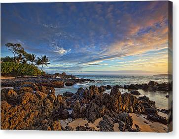 Maui Canvas Print by James Roemmling