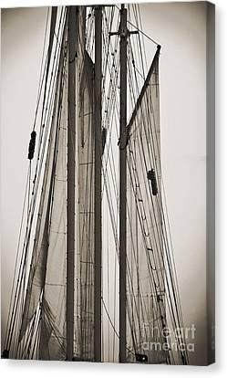 Schooner Pride Tall Ship Charleston Sc Canvas Print by Dustin K Ryan