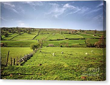 Swaledale Views Canvas Print by Stephen Smith