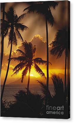 View Of Tahiti Canvas Print by Joe Carini - Printscapes