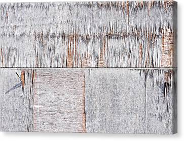 Weathered Wood Canvas Print by Tom Gowanlock
