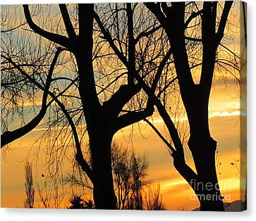 Sunset  Canvas Print by Joyce Woodhouse