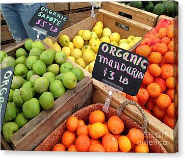 Variety Of Fruit Canvas Print by Troy Green