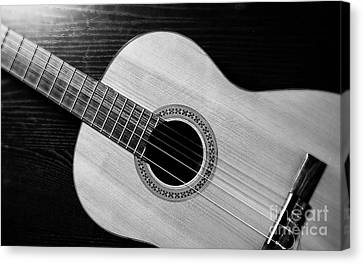 Acoustic Guitar Collection Canvas Print by Marvin Blaine