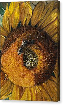 3 Bees Canvas Print by Peter Muzyka