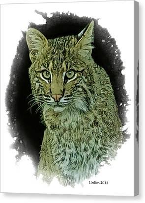 Bobcat Canvas Print by Larry Linton