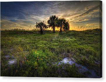 3 Just Beyond Canvas Print by Marvin Spates