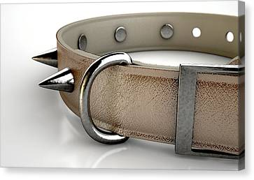 Leather Studded Collar Canvas Print by Allan Swart