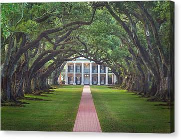 Oak Alley Plantation Canvas Print by Chris Moore