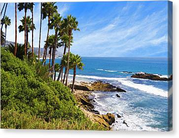 Palms And Seashore, California Coast Canvas Print by Utah Images
