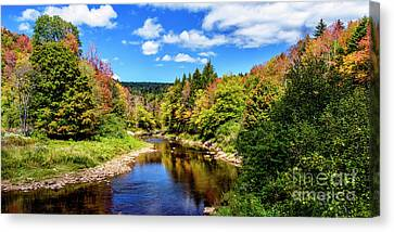 Shavers Fork Of Cheat River Canvas Print by Thomas R Fletcher