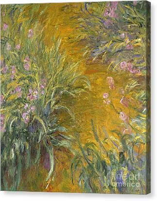 The Path Through The Irises Canvas Print by Claude Monet