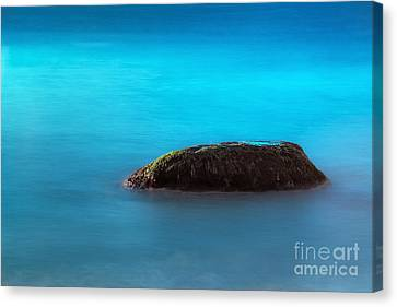 Water Rock Canvas Print by John Greim