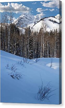 Winter In The Wasatch Mountains Of Northern Utah Canvas Print by Utah Images