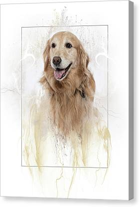 3010.020 Therapet Canvas Print by M K  Miller