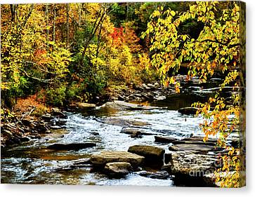 Autumn Middle Fork River Canvas Print by Thomas R Fletcher