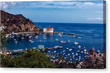 Beautiful Catalina Island Canvas Print by Mountain Dreams