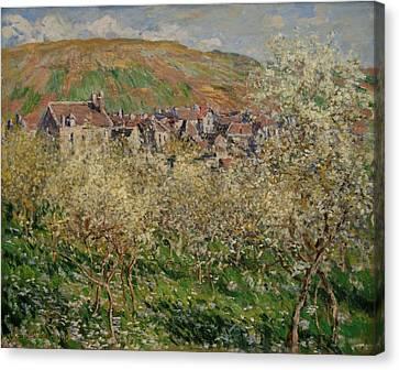 Flowering Plum Trees Canvas Print by Claude Monet