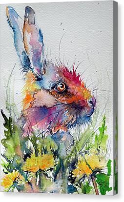 Rabbit Canvas Print by Kovacs Anna Brigitta