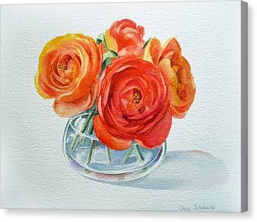 Ranunculus Canvas Print by Irina Sztukowski