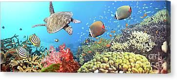 Underwater Panorama Canvas Print by MotHaiBaPhoto Prints