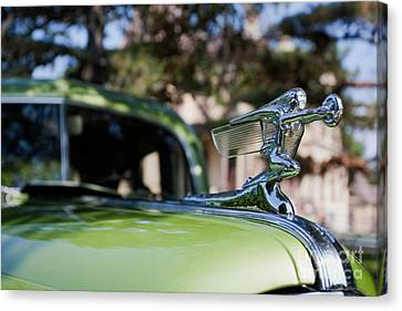 41 Packard Canvas Print by Alan Look