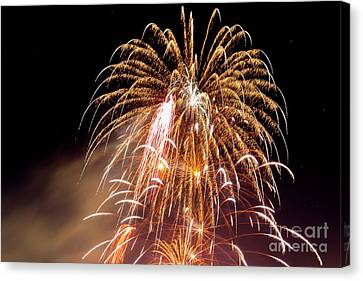 4th Of July Fireworks. Canvas Print by Eyal Aharon