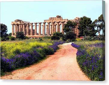 Selinunte - Sicily Canvas Print by Joana Kruse