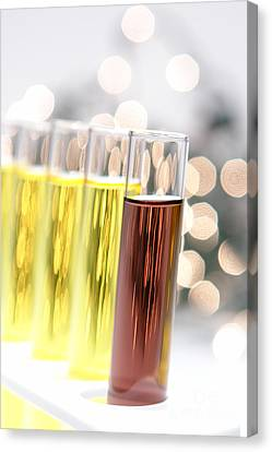 Test Tubes In Science Research Lab Canvas Print by Olivier Le Queinec