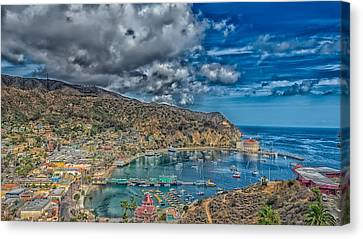 Catalina Island Harbor Canvas Print by Mountain Dreams