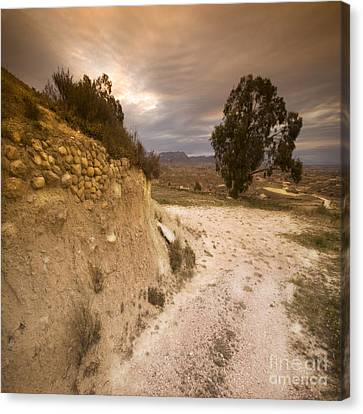 Spanish Landscape Canvas Print by Angel  Tarantella