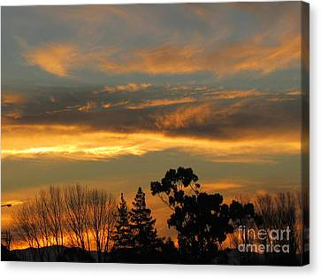 Sunrise Canvas Print by Joyce Woodhouse