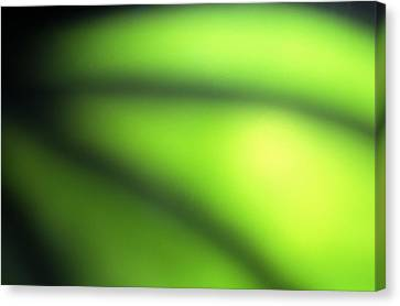 Abstract Canvas Print by Tony Cordoza