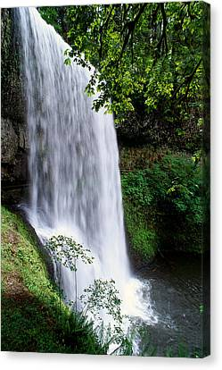 View Of Oregon Canvas Print by Greg Vaughn - Printscapes