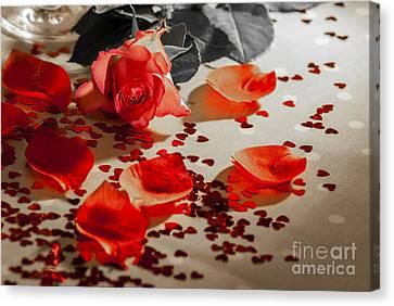Roses Canvas Print by Sebastien Coell