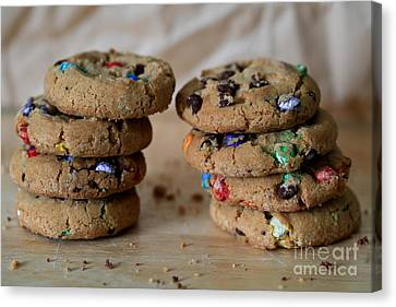 A Balanced Diet Is A Cookie In Each Hand Canvas Print by Tracy Hall